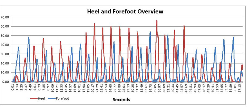 Data Logger Biofeedback Graph for Forefoot and Heel