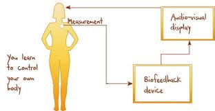Biofeedback Image Map