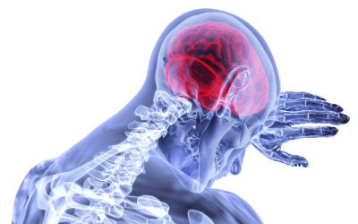 Physiotherapy Treatment and Biofeedback Technology